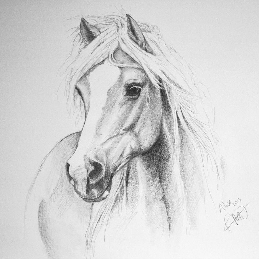 Si Je Pouvais Dessiner Aussi Bien Paard Tekeningen Geschilderde Paarden Dieren Tekenen