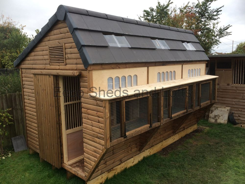 The ultimate pigeon loft google s gning dyr mm for Pigeon coop ideas
