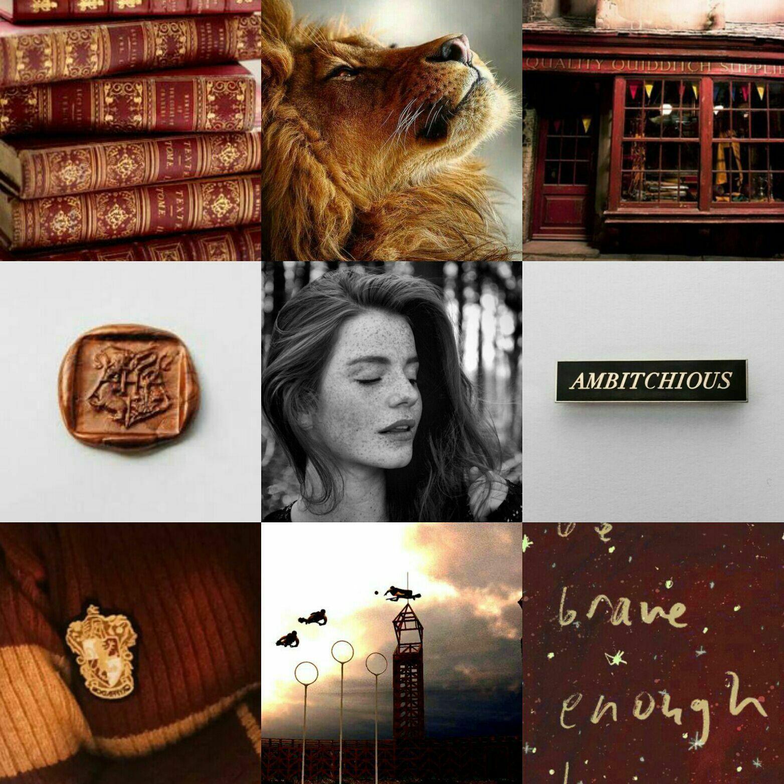 Poisoned Ginny W Ginny Weasley Aesthetic Gryffindor Aesthetic Harry Potter Aesthetic