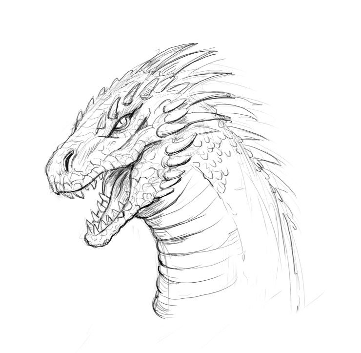 How To Draw A Dragon Step By Step And Easy To Follow Tutorial Easy Dragon Drawings Dragon Drawing Dragon Sketch