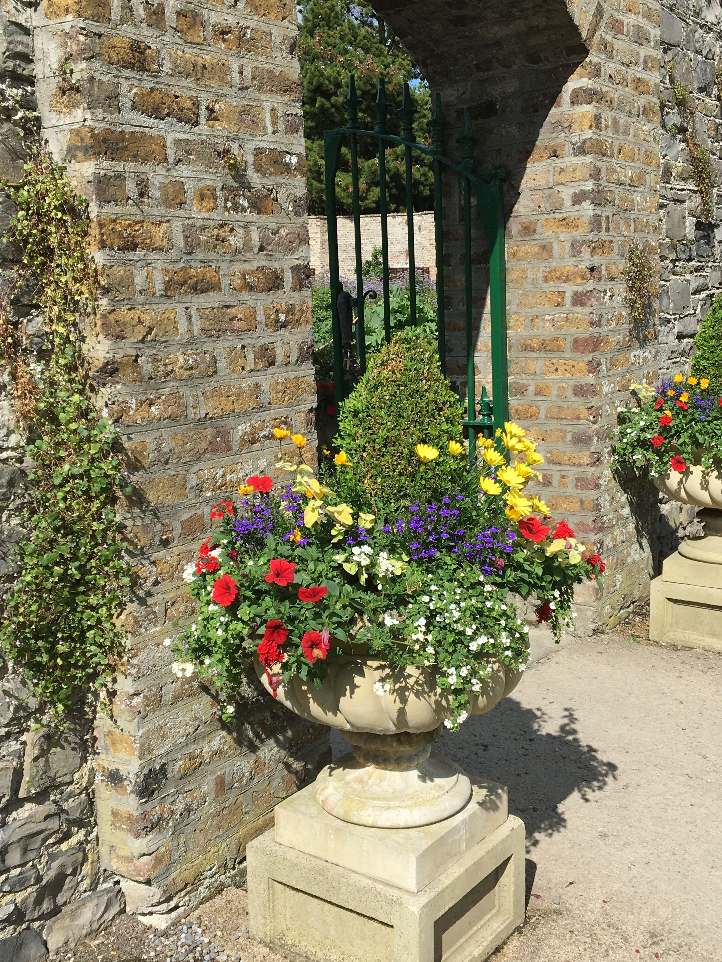 walled garden phoenix park dublin garden plants on walled id=47537