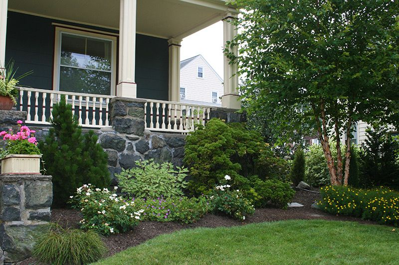 the pine near the stair way provides an evergreen presence on backyard landscape architecture inspirations id=42098