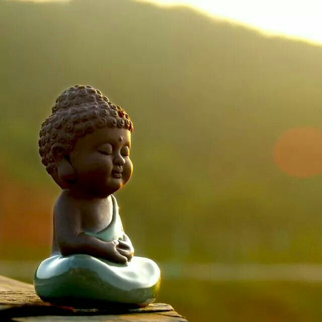Vipassana Meditation Teaches Us How To Scrutinize Our Own Perceptual Process With Great Precision We Learn To Watch Baby Buddha Buddha Zen Small Buddha Statue