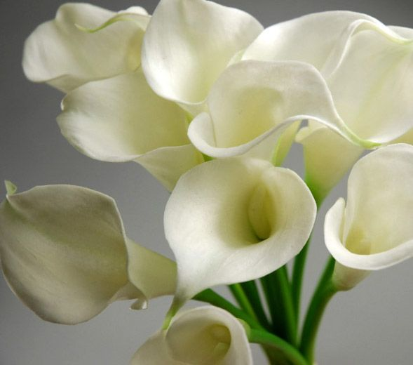 These Look And Feel Real Real Touch Calla Lily Bouquet 3 Flower Heads 19 Each 3 For Calla Lily Bouquet Wedding White Calla Lily Bouquet Calla Lily Bouquet