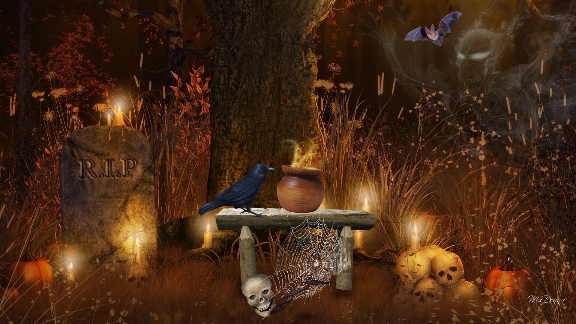 Popular Wallpaper Halloween Skull - d0ab5f50418142e16b61abe29c87f562  You Should Have_481215.jpg