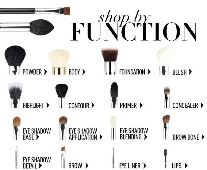 Makeup Brushes And Their Functions Eyeshadow Basics Makeup