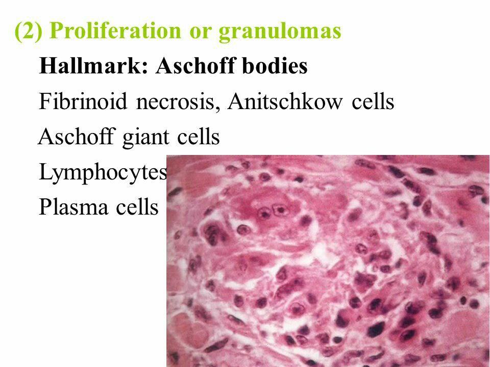 Pin By Azad Mourya On Pathology With Images Pathology Body Food