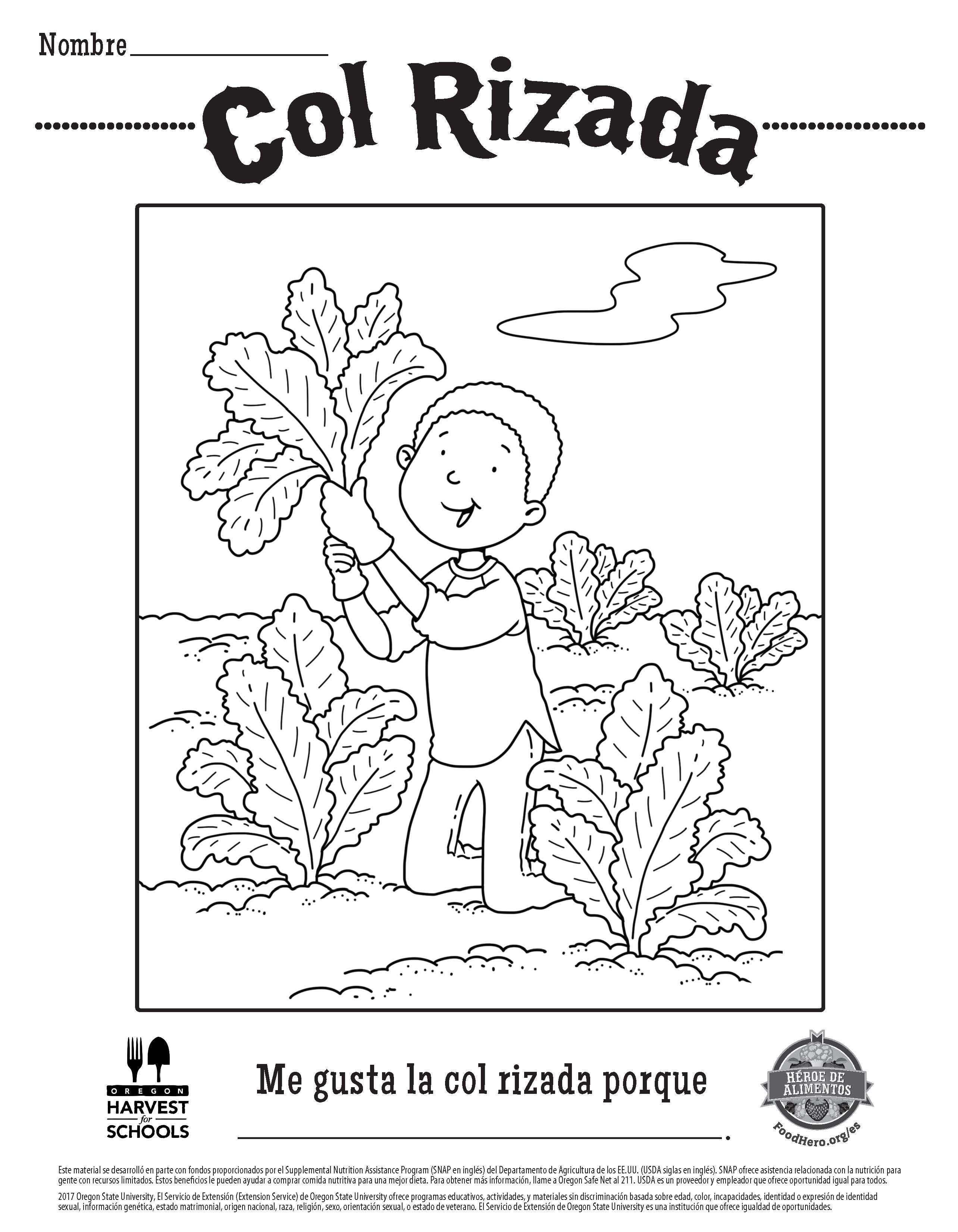 Food Hero Free Printable Children S Coloring Sheet Kale In Spanish