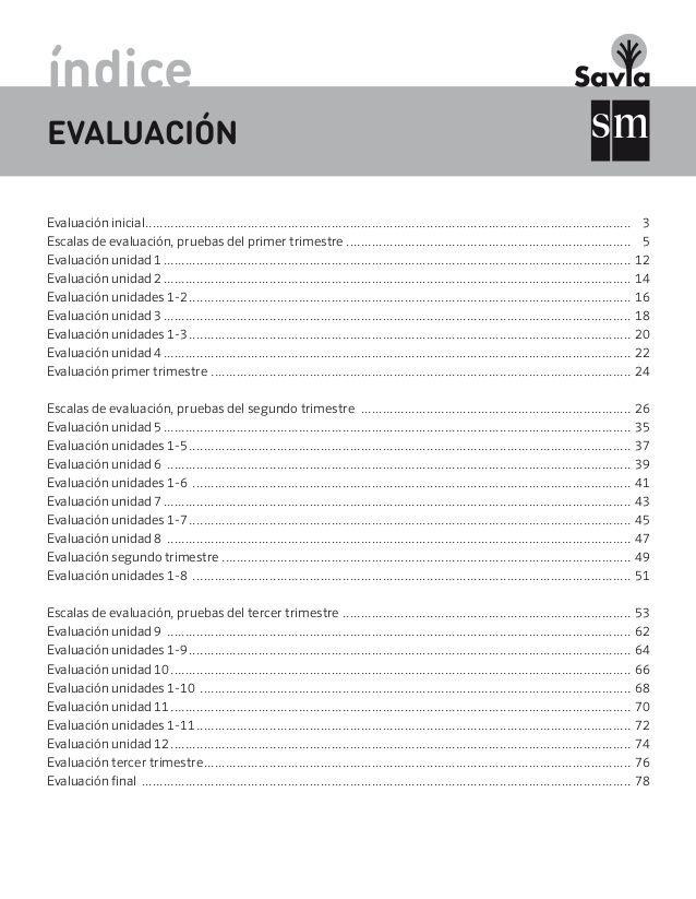 Evaluaciones Mate Savia 6º Matematicas Primero De Primaria Matematicas 6 Primaria Primaria Matematicas