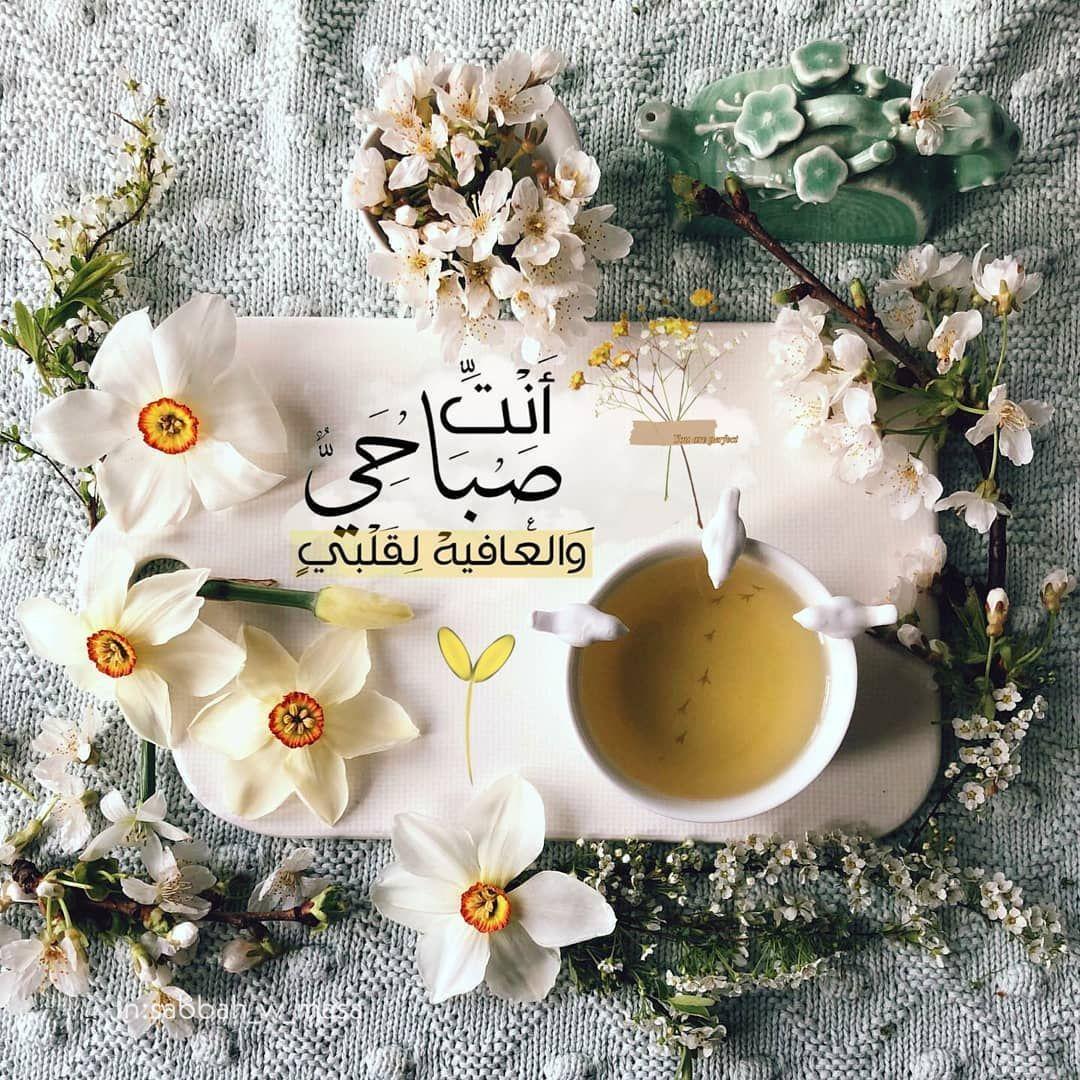 صبح و مساء On Instagram صباح الخيرات والمسرات صباح الور Beautiful Morning Messages Good Morning Flowers Good Morning Arabic