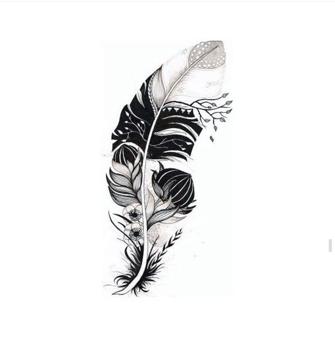 Plumas Tattoo Diseos. Finest Images By With Plumas Tattoo Diseos ...