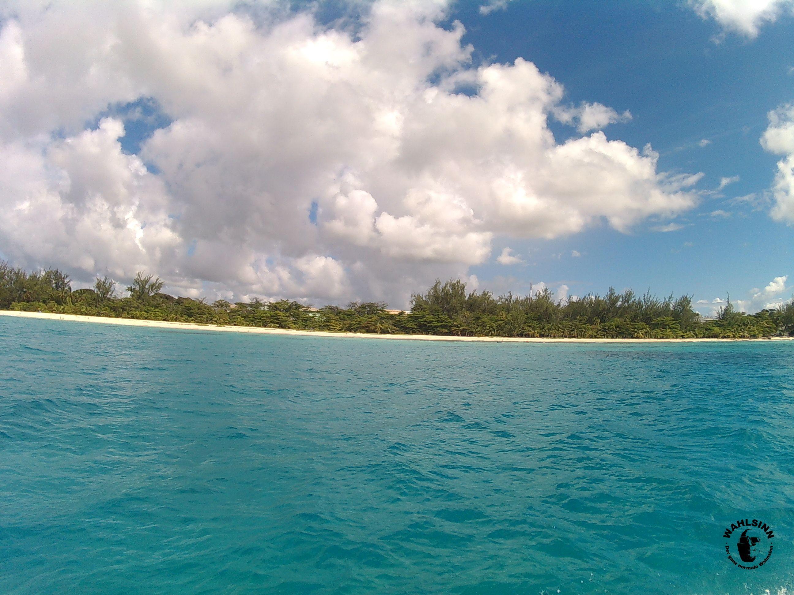 Barbados - Tauchspots direkt vor einer Traumhaften Kulisse wie dieser! Läuft...oder Taucht was!