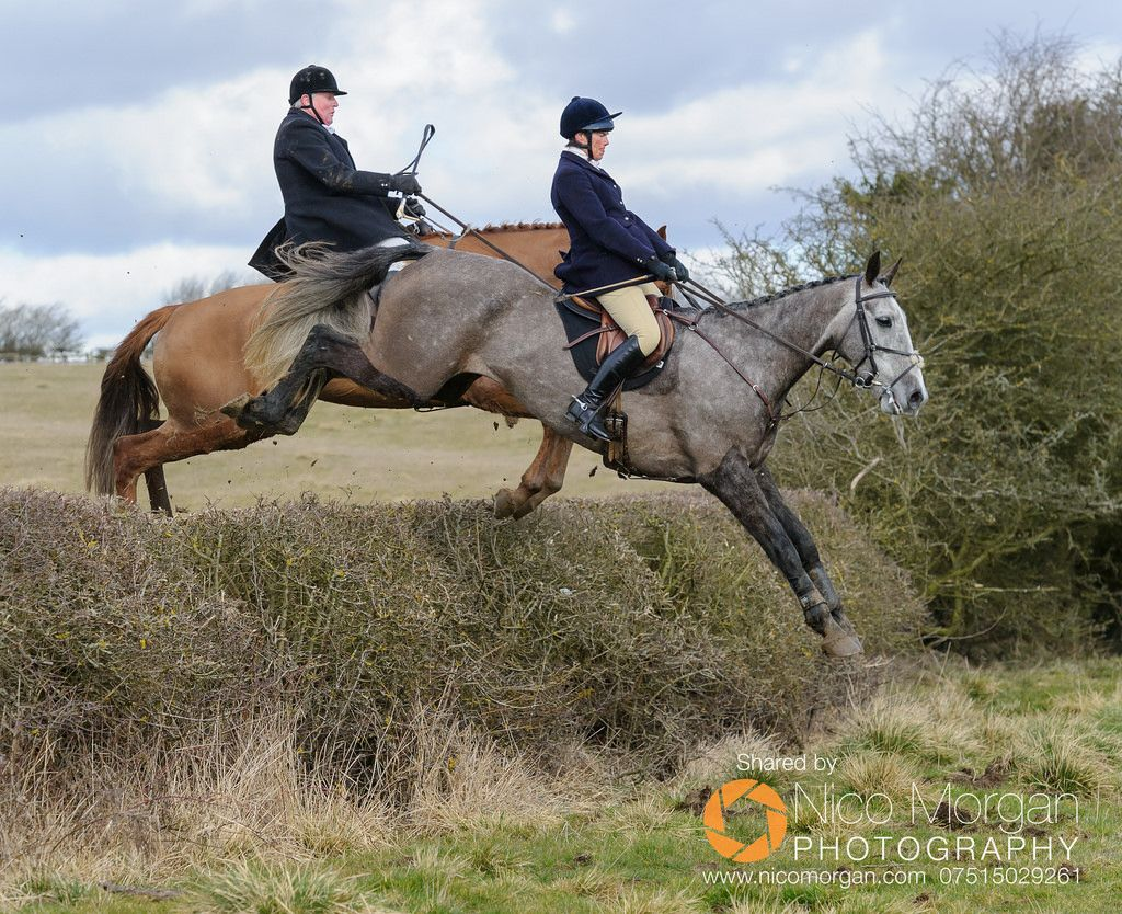 Idea by Angie Lilienthal on horses Clapham, Eventing, Horses