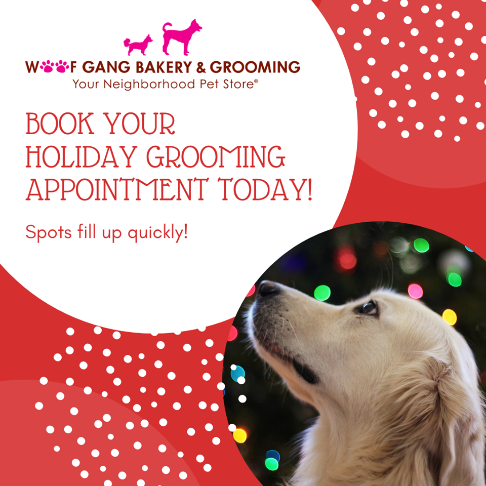 Do You Need To Schedule A Holiday Grooming Appointment Now Is The Time To Call Appointments Are Filling Up Quickly 407 790 Pet Store Your Pet Grooming