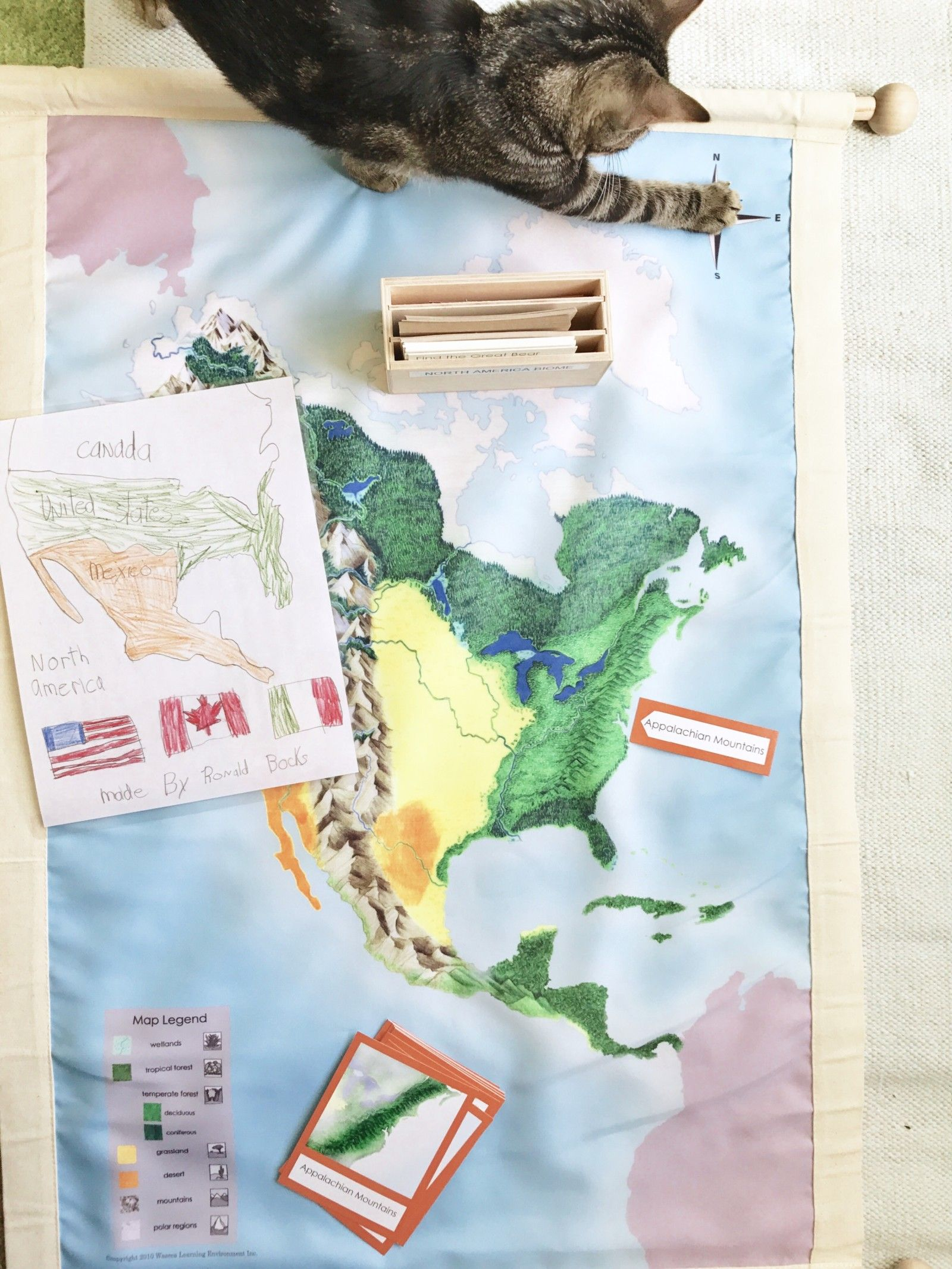 Homeschool With North America Geography Study Waseca Biome Map
