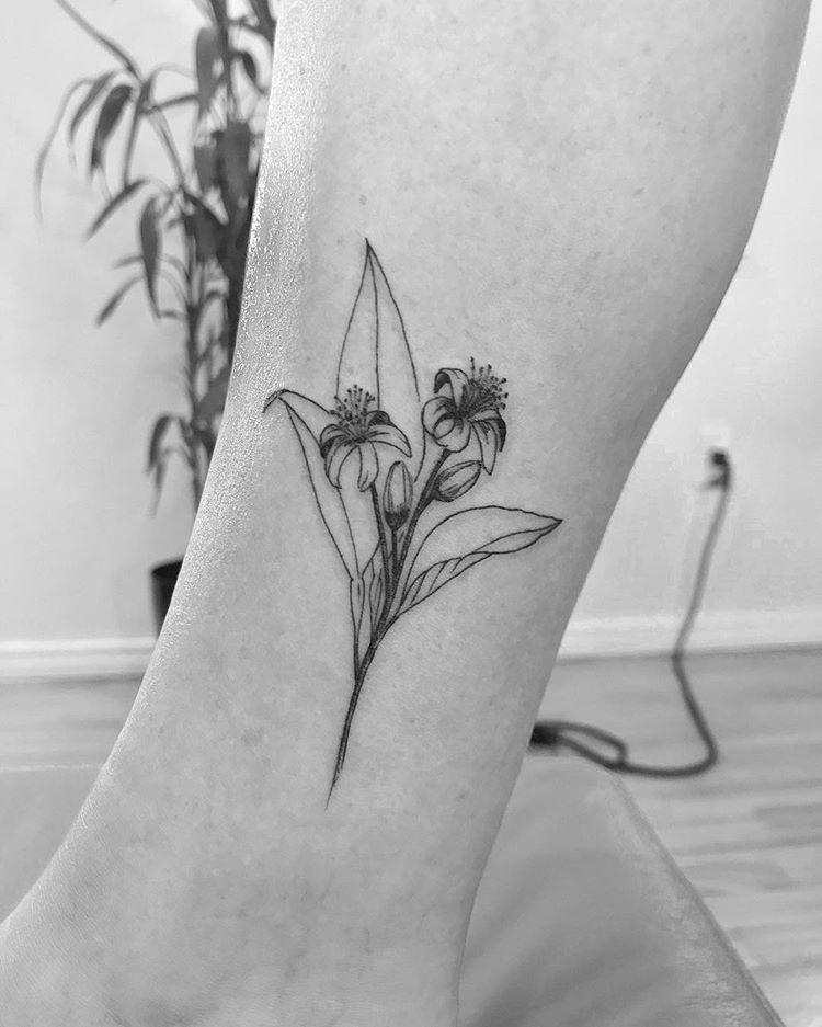 To Gostando Muito De Botanica Mais Uma Flor De Laranjeira Pra Lista Valeuu Obrigadoo Erikaroesler Por Mais Blossom Tattoo Piercing Tattoo Tattoos