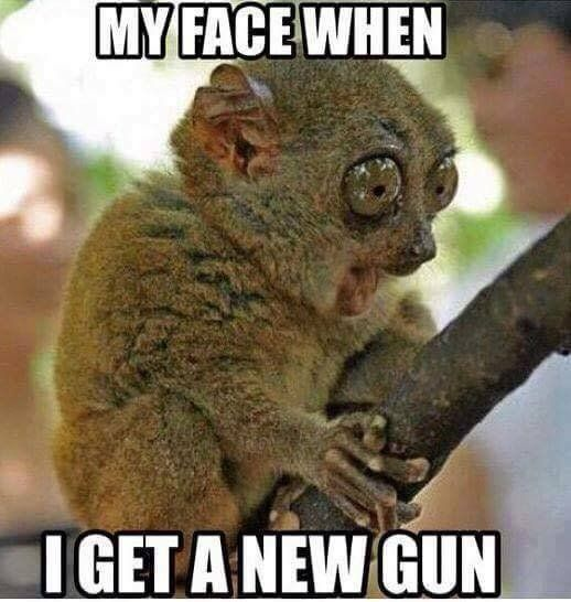 Its Always A Good Day To Get A New Gun Bang Animal Humour