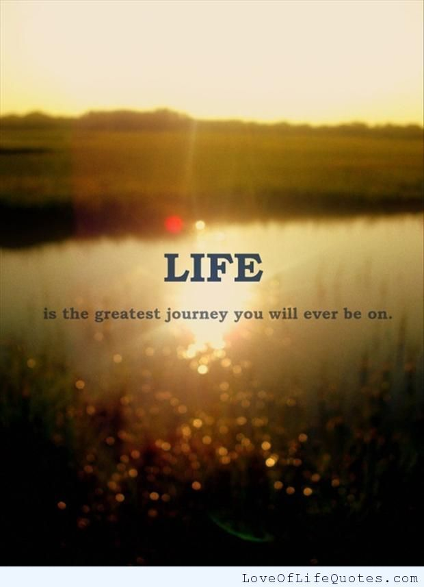 Famous Short Life Quotes Fair Life Is The Greatest Journey You Will Ever Be On  Httpwww