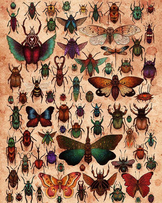 "Love Bugs 8x10"" Print Bug art, Art, Love bugs"