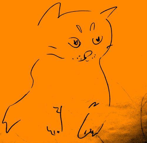 sketch cat
