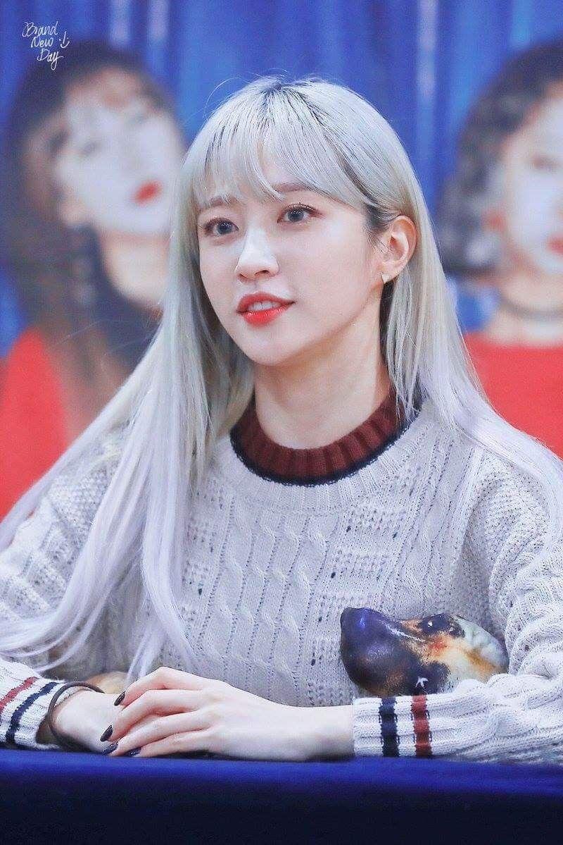 Pin De Kneesaa White En Exid Grupo De Chicas Chicas Corea