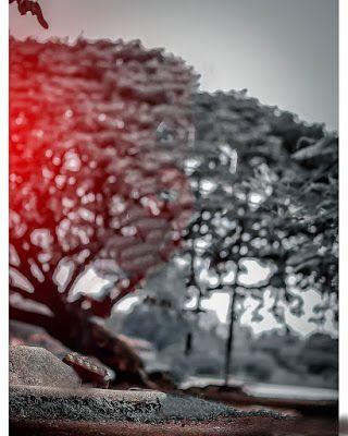 Background Images For Picsart Picsart Background Hd Images Download Zip Ba Dslr Background Images Blurred Background Photography Photoshop Digital Background