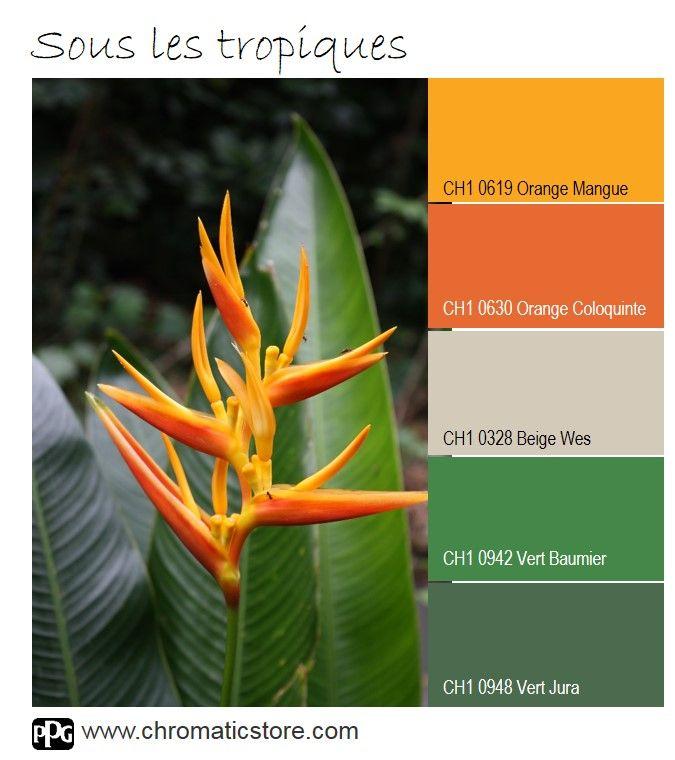 Une Palette Haute En Couleurs Inspiree Des Fleurs Tropicales Ou Le