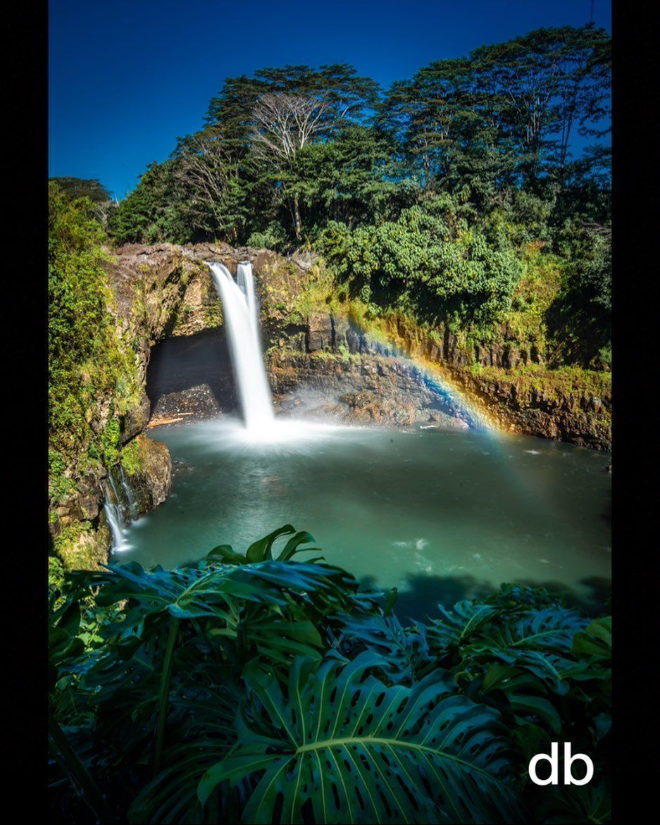 Rainbow Falls, one of Hilo's treasures. Waiānuenue. My hood ! Loving the island so much lately. Sunrise Mauna Kea was epically clear this… #rainbowfalls Rainbow Falls, one of Hilo's treasures. Waiānuenue. My hood ! Loving the island so much lately. Sunrise Mauna Kea was epically clear this… #rainbowfalls Rainbow Falls, one of Hilo's treasures. Waiānuenue. My hood ! Loving the island so much lately. Sunrise Mauna Kea was epically clear this… #rainbowfalls Rainbow Falls, one of Hilo #rainbowfalls