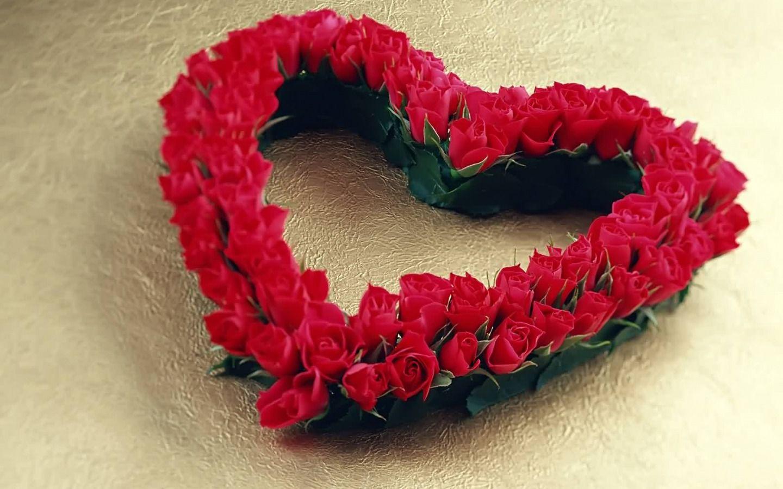 سيدتي كيف تحافظين على محبة زوجك Red Roses Beautiful Red Roses Images Free Valentine