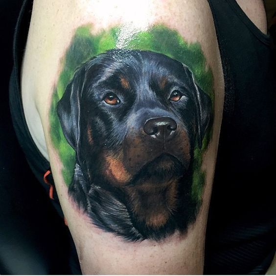 The 35+ Best Rottweiler Tattoo Designs In The World | Dog ...