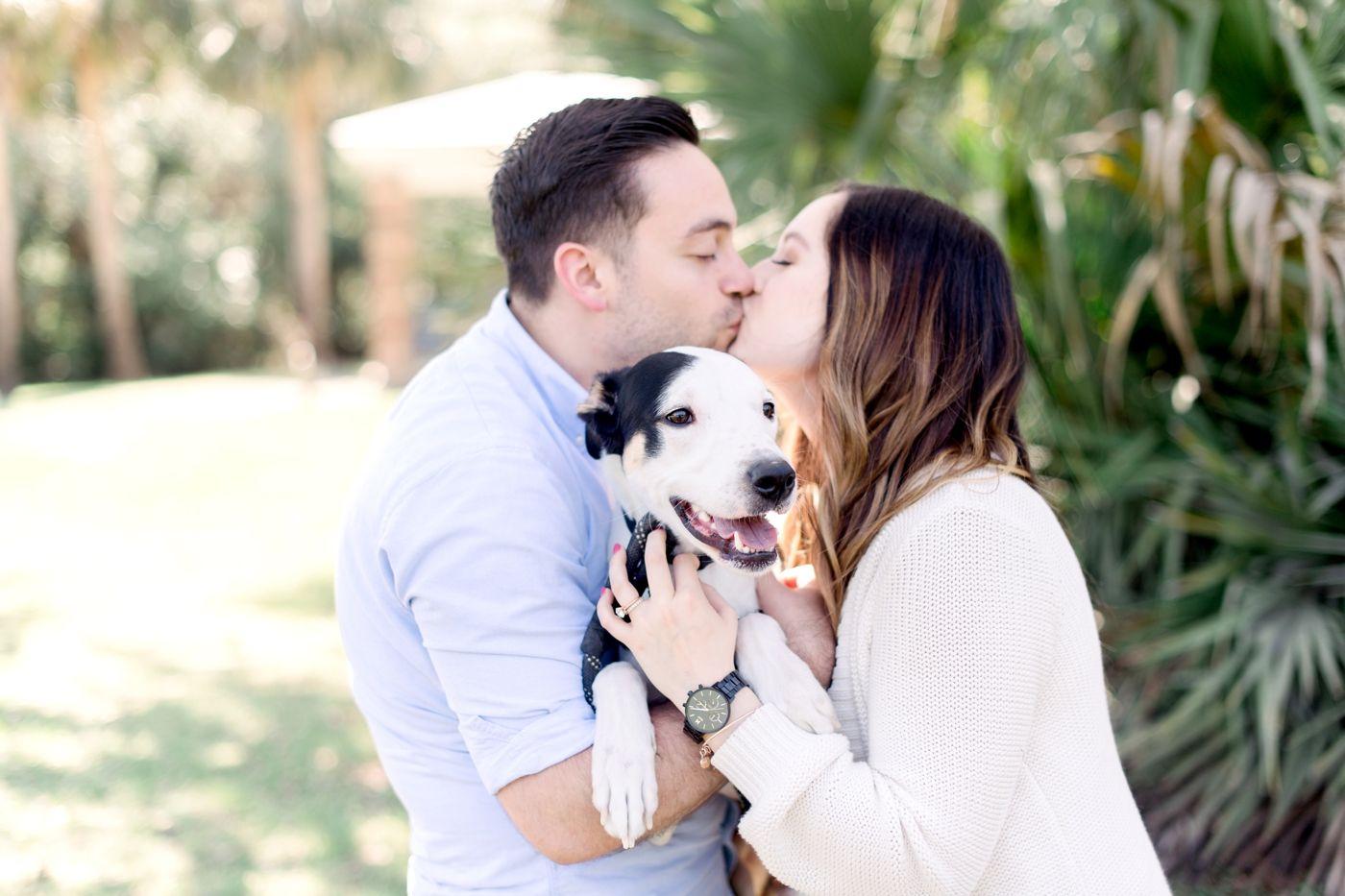 Pet Photography Fundraiser for Orlando Animal Rescue, The Pixel Fund #animalrescue