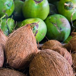 The Facts about Coconut Oil from the Academy of Nutrition and Dietetics