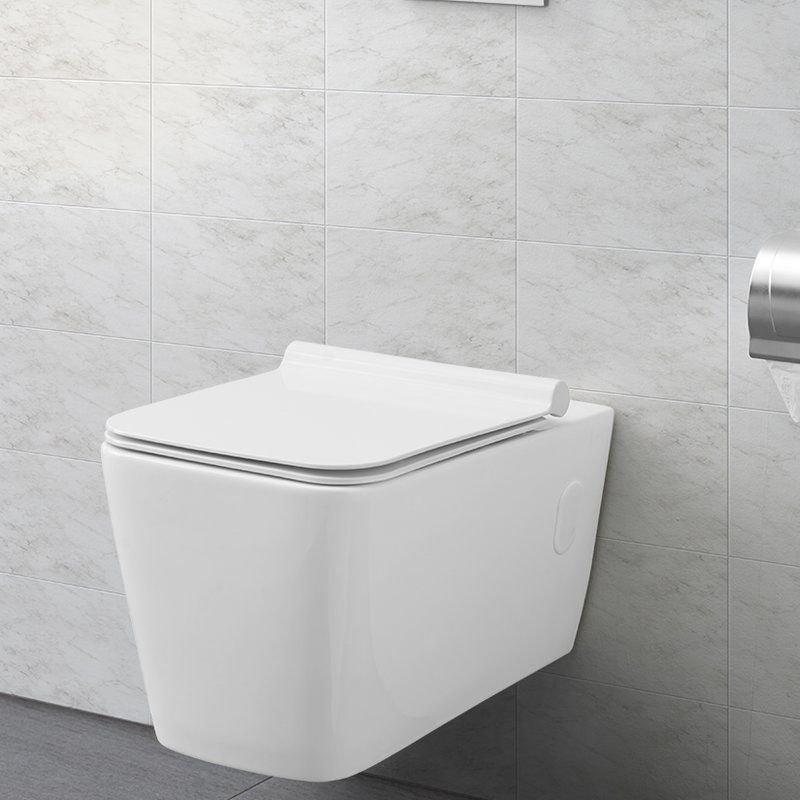 Concorde Dual Flush Elongated Wall Mounted Toilet Seat Included Wall Mounted Toilet Dual Flush Toilet Toilet Seat