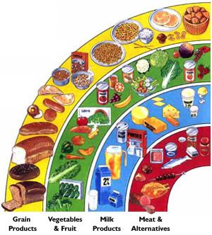 Unit 3 Healthy Living Canada Food Guide Healthy Food Guide Healthy Eating