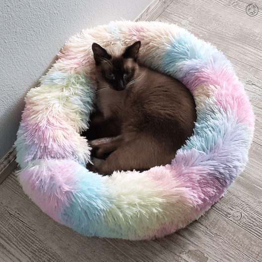WIN a Marshmallow Cat Bed in 2020 Cat bed, Luxury cat