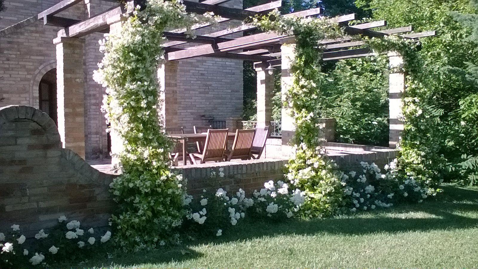 La pergola in fiore davanti al primo casale jasmine and
