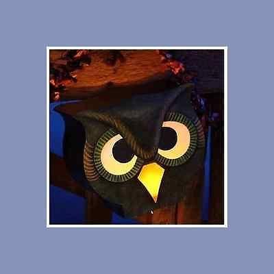 HALLOWEEN-OWL-Bird-Nostalgic-Tin-Lantern-Bethany-Lowe-Vintage-style-decor