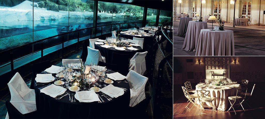 Faunia Wedding Passion Salones Para Bodas Bodas En Madrid Bodas