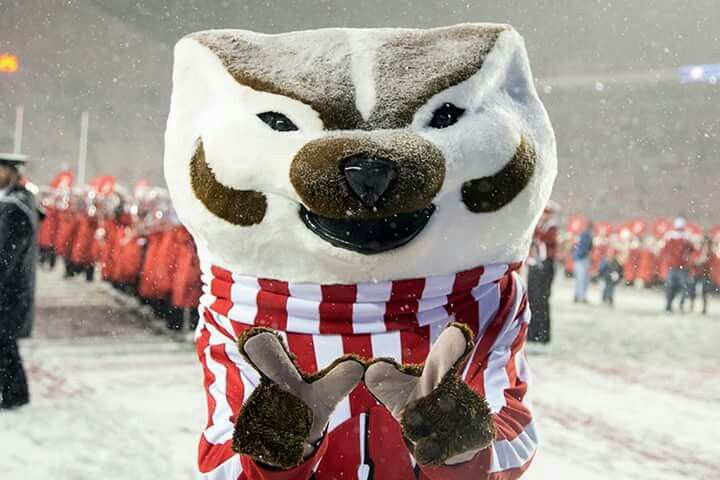 Pin By Alyssa Walrich On Madison Wisconsin Badgers Football