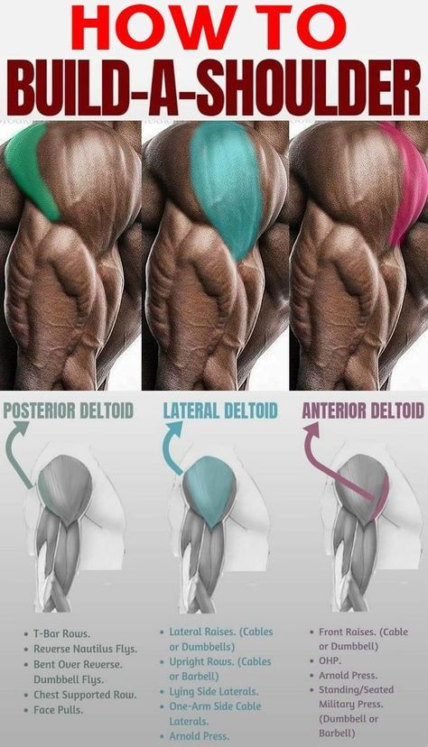 Build Big Round Delts That Make Your Good Lifts Even Better - GymGuider.com