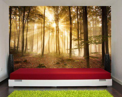 Fototapete Wald am Morgen Nr391 Größe 420x270cm Dunst Stimmung - fototapete wald schlafzimmer