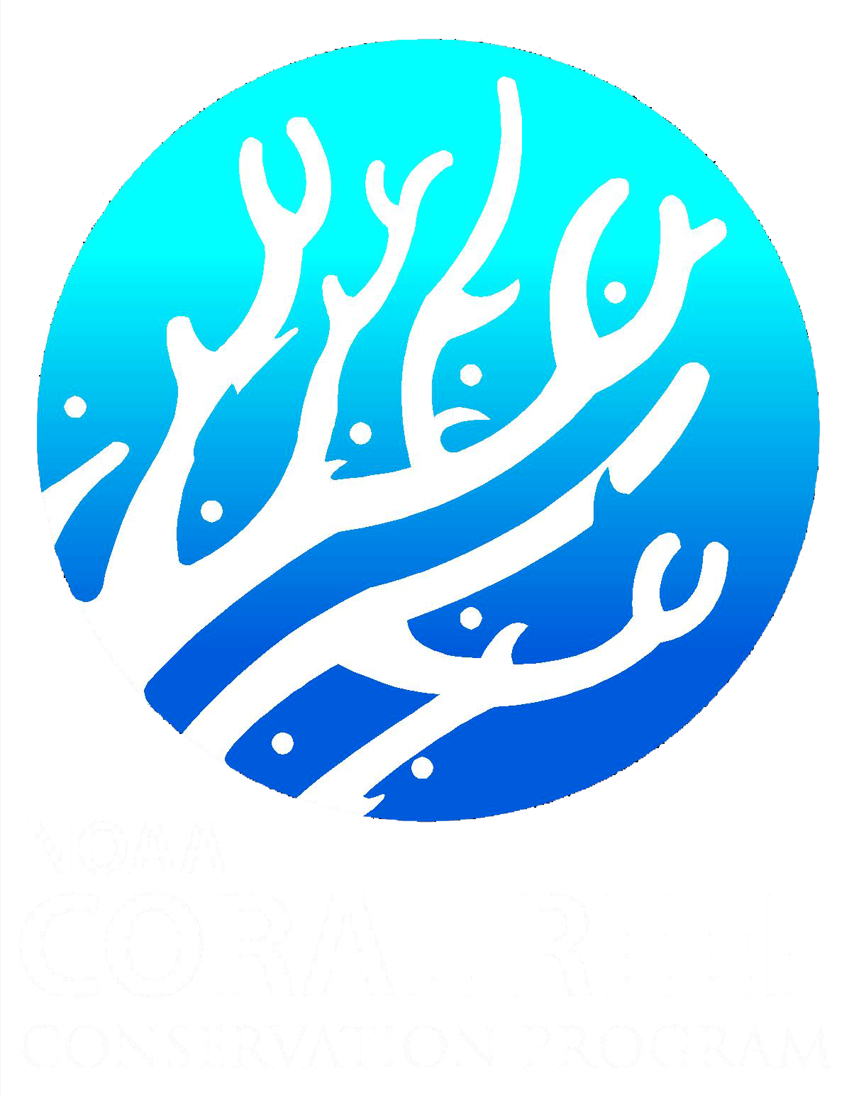 Coral Reef Resilience To Climate Change In The Florida