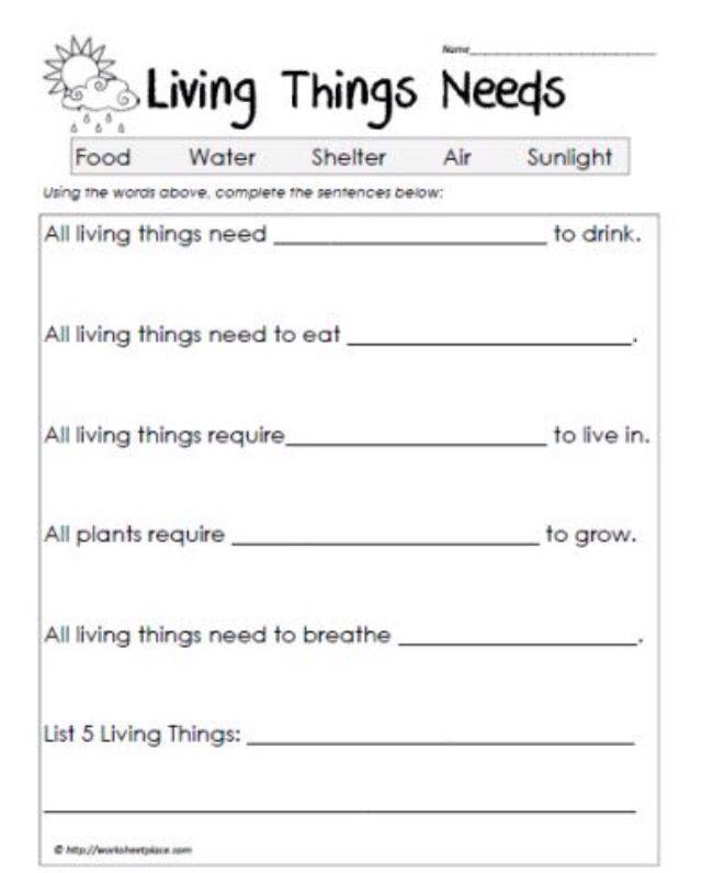 Work sheet | Living non living things | Pinterest