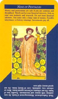 nine of coins tarot meaning