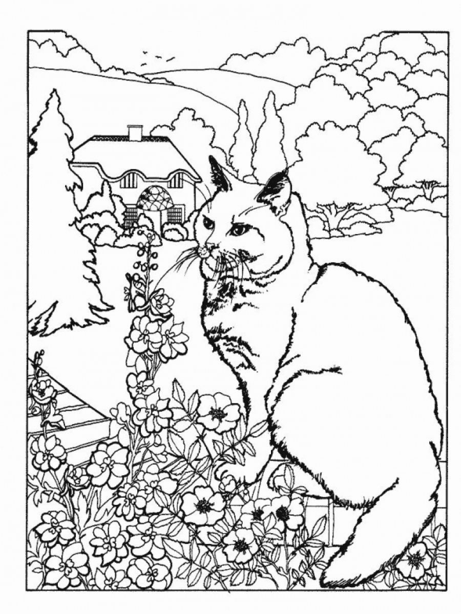 free advanced coloring pages # 21