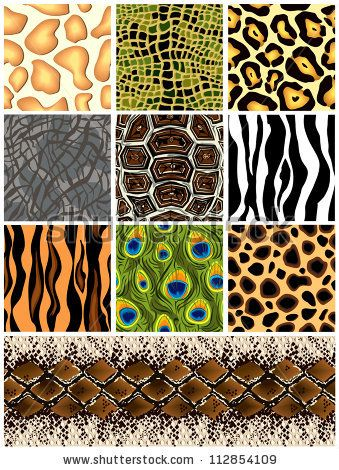 Jungle Animal Prints Stock Photos Jungle Animal Prints Stock Photography Jungle Animal Prints Stock Animal Print Animal Print Wallpaper Animal Prints Pattern