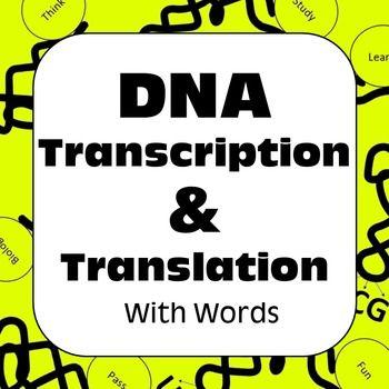 DNA Transcription \ Translation With Words Dry Lab High School - best of tabla periodica de los elementos electronegatividad