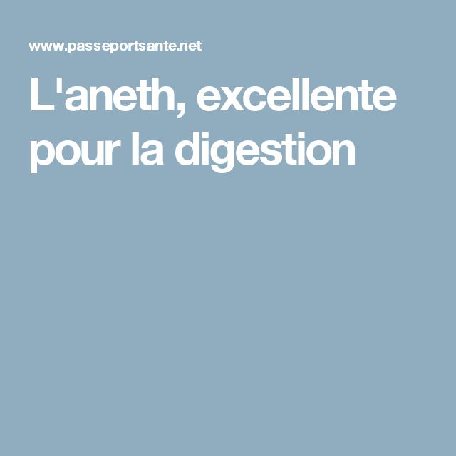L'aneth, excellente pour la digestion