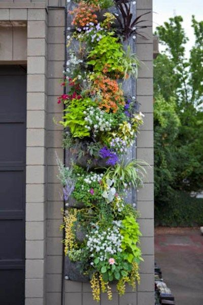 Inspiration For A Vertical Garden With Root Pouch  | GoodsHomeDesign
