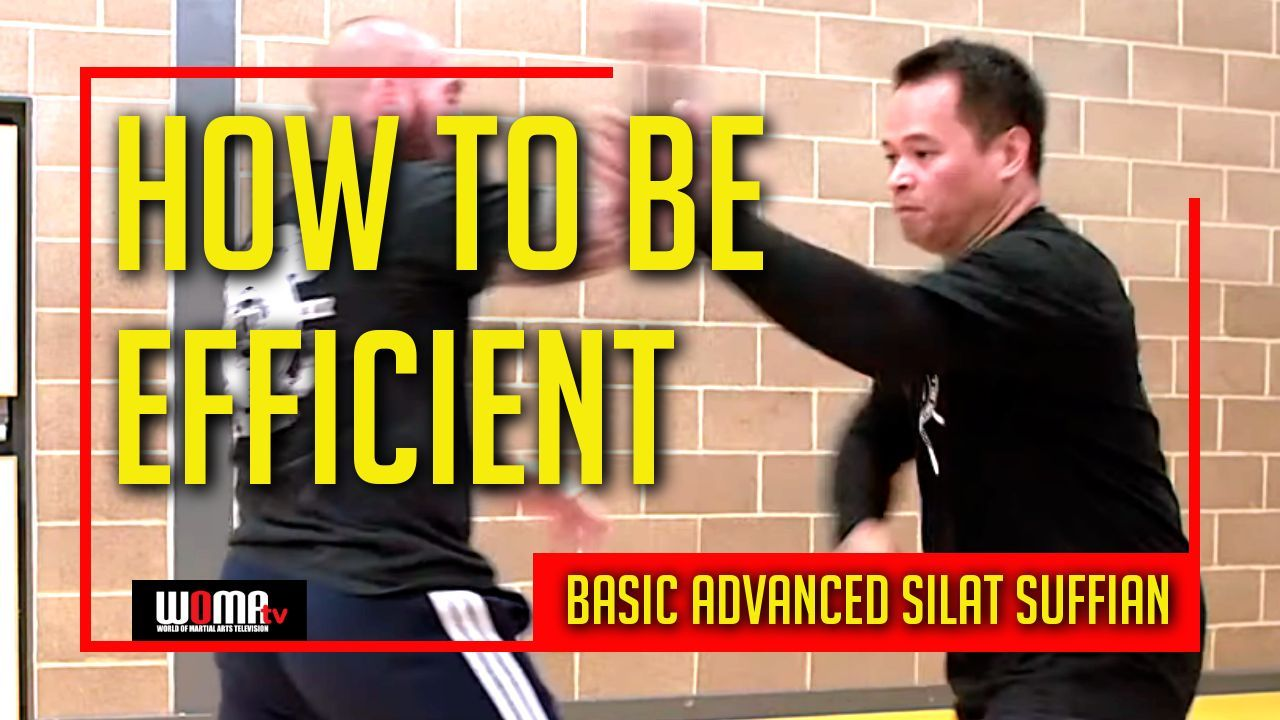 How to be efficient in basic advanced silat martial arts